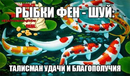 Что означают рыбы в фен-шуй?