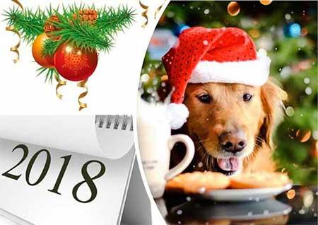 Блюда на новогодний стол 2018